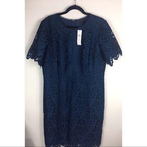 Ann Taylor blue lace dress 16 NEW